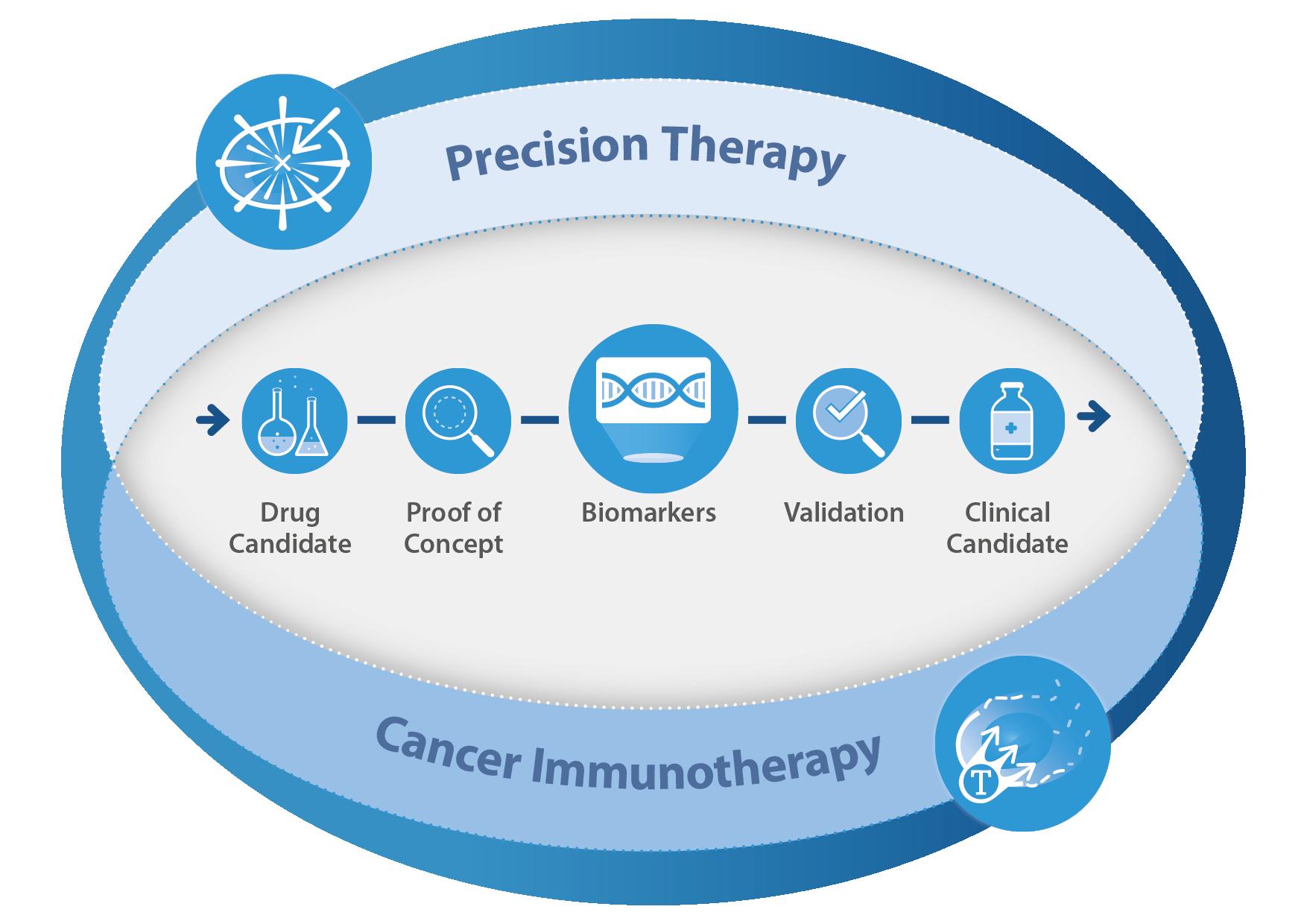 Precision Medicine flowchart
