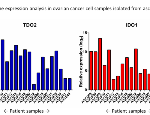Expression of Cancer Immunotherapy Targets in Patient Material