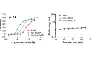The figure illustrates results for the Arginase Gold assay technology, for measuring inhibition of Arginase 1 inhibitors