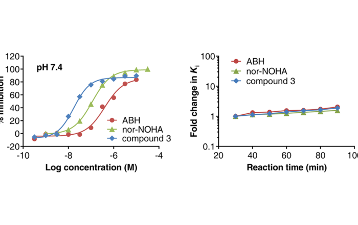 The figure illustrates results for the Arginase Gold assay technology, for measuring inhibition of Arginase 1 inhibitors
