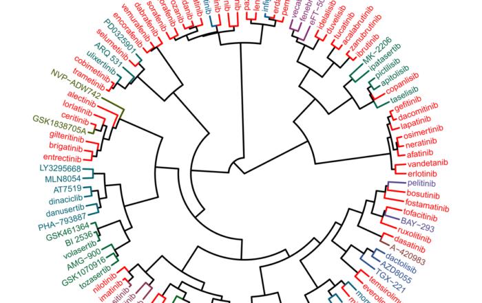 NTRC DoT20 Clustering Of Kinase Inhibitors Web
